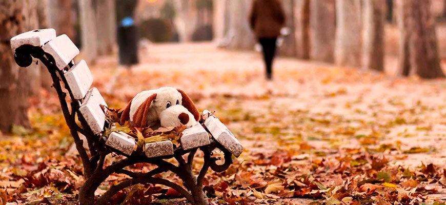 Осеннее настроение: хандра и депрессия